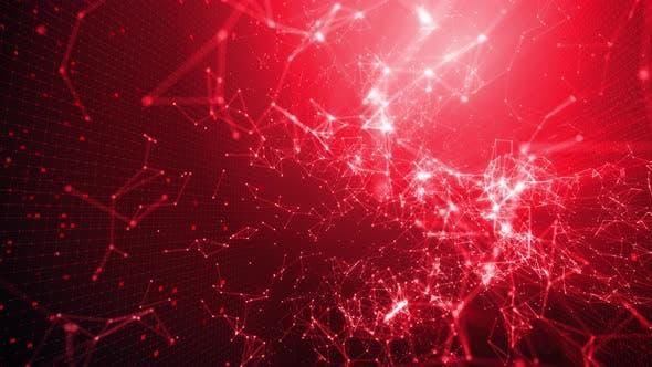 Digitale Netzwerklösungen 04 4K