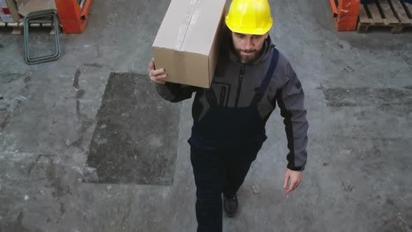 Thumbnail for Male Warehouse Worker Carrying Box