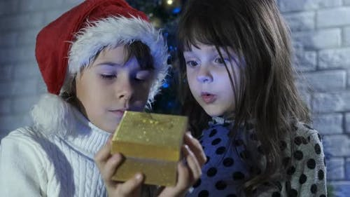 Desirable Christmas Present
