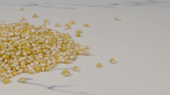 Thumbnail for Corn Seeds