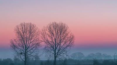 Minimalistic Rural Landscape at Sunrise