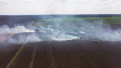 Clouds of Smoke Above the Burning Field