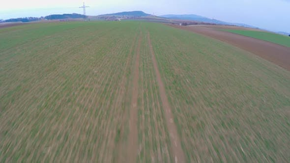 Thumbnail for Green Farmland, Aerial View of Long Cultivated Fields. Agriculture, Farming