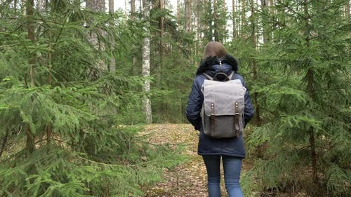 Young woman with backpack in a woods. Hiking at summertime