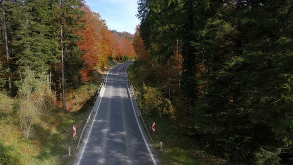 Thumbnail for Flying Over The Empty Autumn Road 14