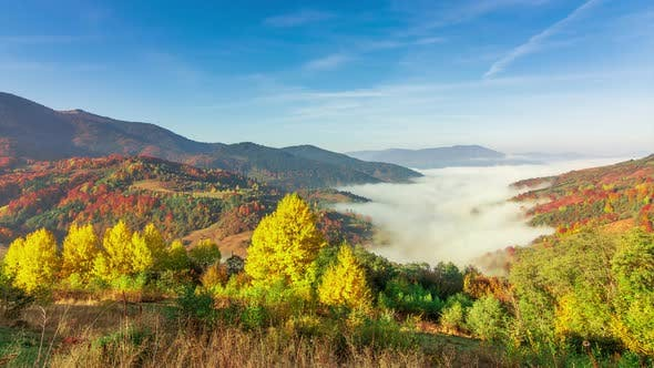Morning Mist Over the Valley Among the Mountains in the Sunlight. Fog and Beautiful Nature of