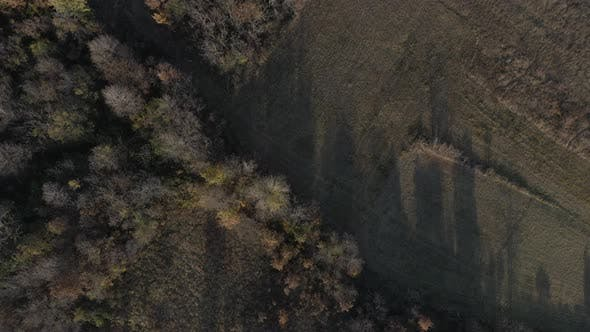 Thumbnail for Endless forest over the hill Eastern Serbia  by autumn 4K drone video
