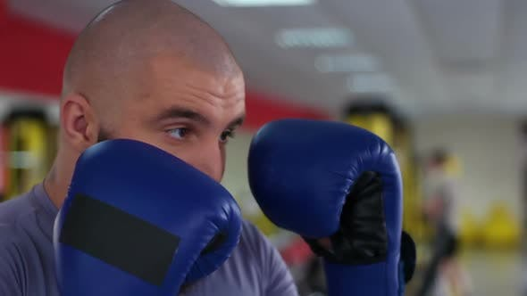Thumbnail for Face Closeup of Man in Boxing Gloves Punching Sparring Partner During Workout