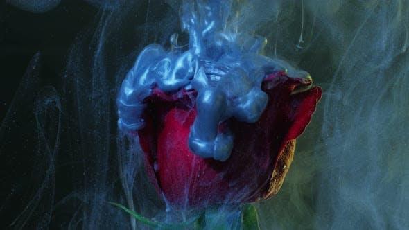 Thumbnail for Flower Ink Splash Faded Denim Blue Vapor Motion