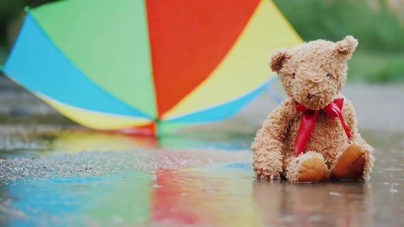 A Wet Teddy Bear Is Sitting in a Puddle Under an Umbrella
