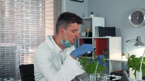 Research Scientist Observing Plant Under Magnifying Glass and After Drawing Attention