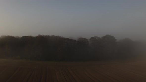 Thumbnail for Drone Over Field And Copse Of Trees