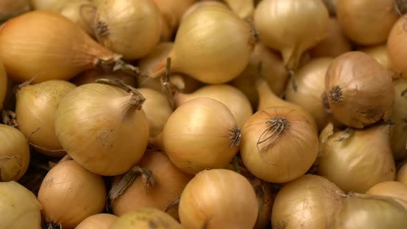 Thumbnail for Footage White Onions Rotation Background