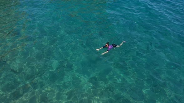 Cover Image for Aerial View Girl Swims On The Sea
