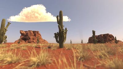 Desert Cacti And Cloud