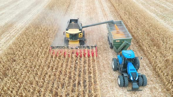 Thumbnail for Aerial Shot of Combine Loading Off Corn Grains Into Tractor Trailer. Agricultural Machines Working