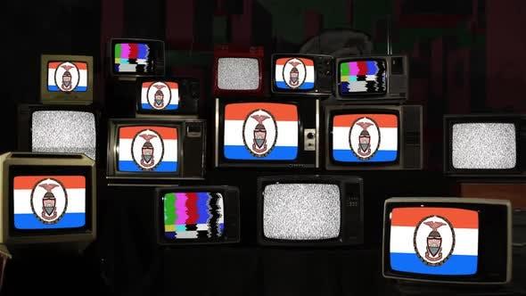 Thumbnail for Flag of The Bronx on Retro TVs.