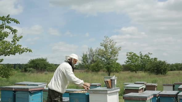 Thumbnail for Beekeeper Working in his Apiary