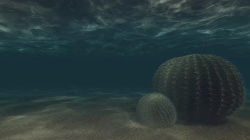 Underwater Loopable 4k