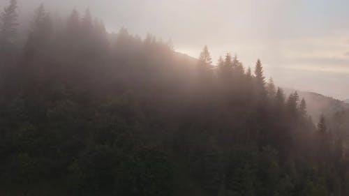 Mystical Mountain Landscape