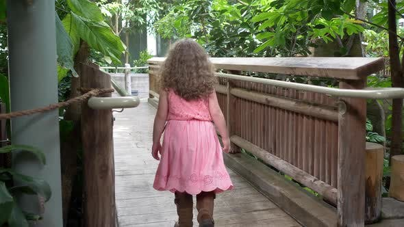 Thumbnail for Young girl walking up pathway through jungle habitat in aviary