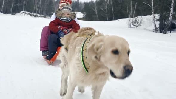 Thumbnail for Joyful Winter Activity