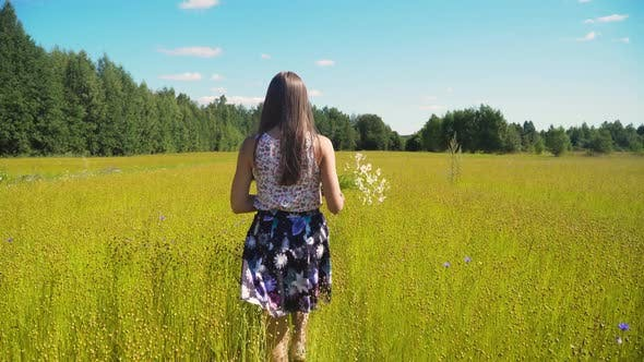 Thumbnail for Summer Landscape, Girl, Field of Flax