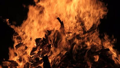 Big Bonfire Burns at Night on a Black Background