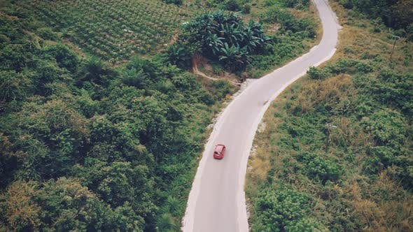 Cinematic aerial view clip of a moving car on a road trip on a road in between trees and nature