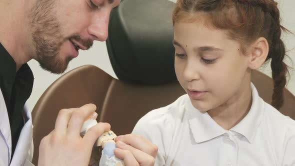 Thumbnail for An Interesting Doctor Tells a Curious Girl About the Structure of the Jaw
