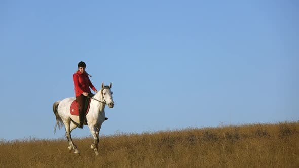 Thumbnail for Horsewoman Riding a Horse Galloping Across the Field