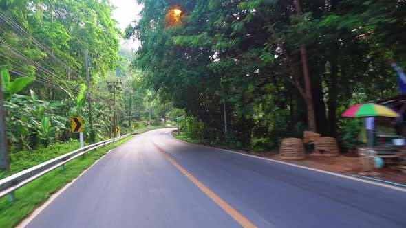 Thumbnail for driving on an asphalt road in a rainforest. beautiful landscape