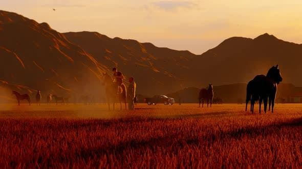 Thumbnail for Grazing Wild Horses Herd and Young Man Riding a Horse