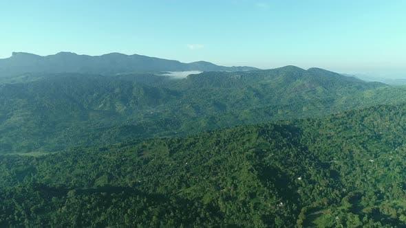 Thumbnail for Flyover Green Landscape