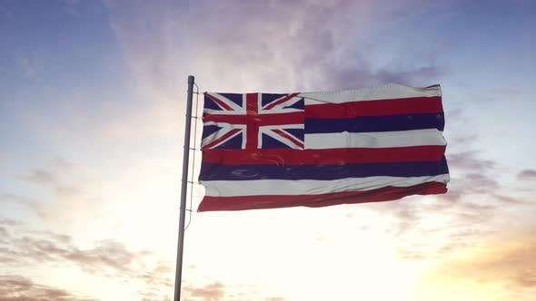State Flag of Hawaii Waving in the Wind