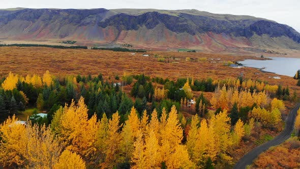 Thumbnail for Aerial View of Colorful Autumn Landscape in National Park Thingvellir, Iceland