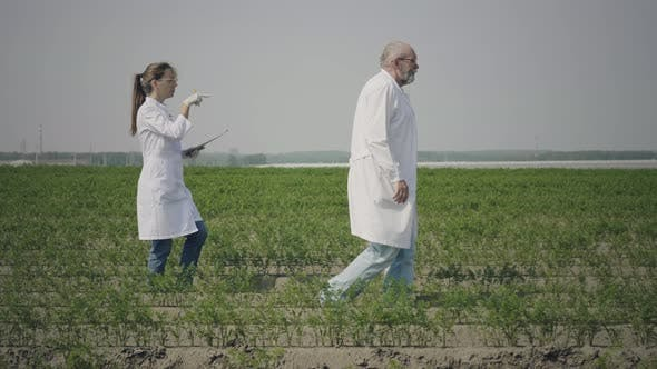Thumbnail for Agronomy scientists work in field