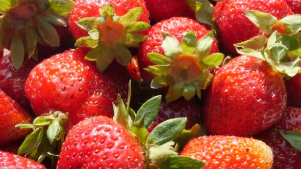 Red strawberry many fruit pieces background 4K 3840X2160 UltraHD footage - Natural fruit red strawbe