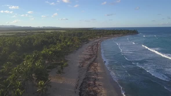 Beach In The Caribbean With Nature In Slow Motion