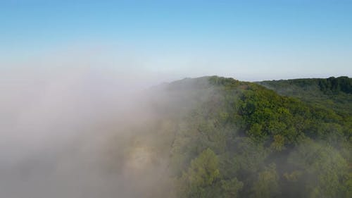 Morning Fabulous Fog That Covers the Mountains. Aerial Top View of Green Trees Covered with Thick