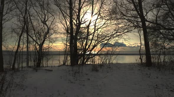 Thumbnail for Sunset between winter snow and trees nature footage