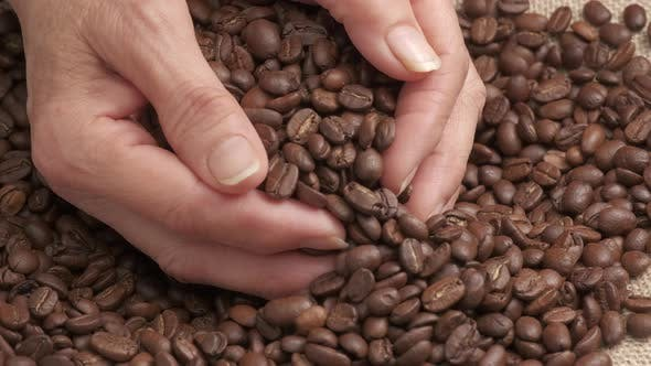 Roasted Coffee Beans Organic Agriculture