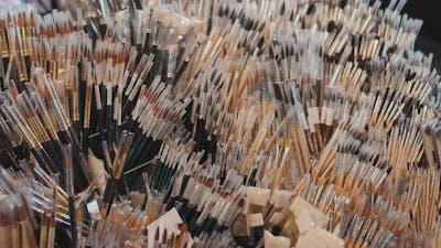 Lots of Paint Brushes