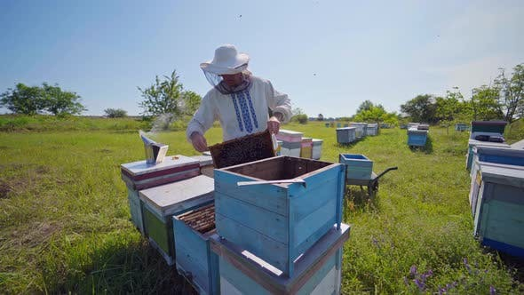 A beekeeper in veil at apiary among hives