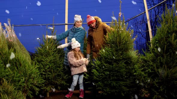 Glückliche Familie wählt Weihnachtsbaum auf dem Markt