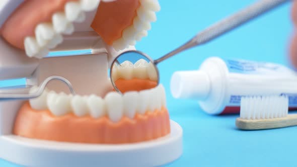 Thumbnail for Doctor Examining Patient's Teeth