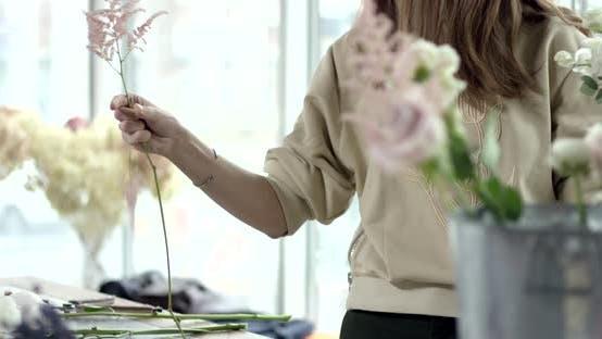 Thumbnail for Flowers