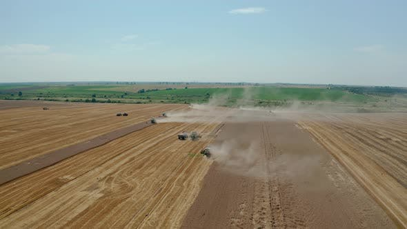 Thumbnail for Aerial Drone View Many Harvesting Machine Cutting Down Ripe Wheat Crop Ready To Be Transported
