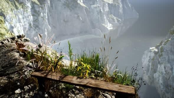 Fresh Grass at Big Rocky Cliff in Ocean