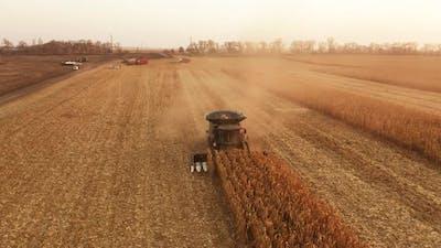 Combine Harvester Working on Corn Field